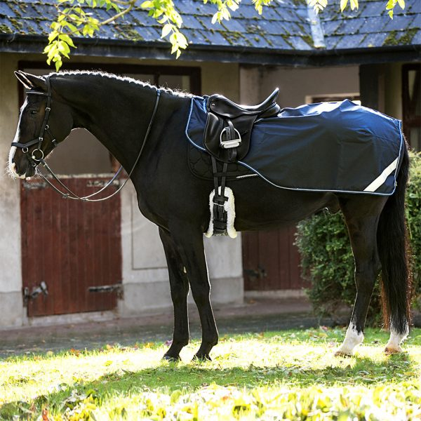 Ratsastusloimi Horseware Amigo Competition Sheet